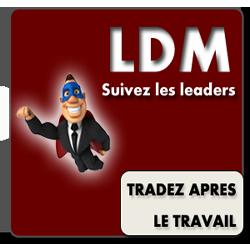 LDM-small