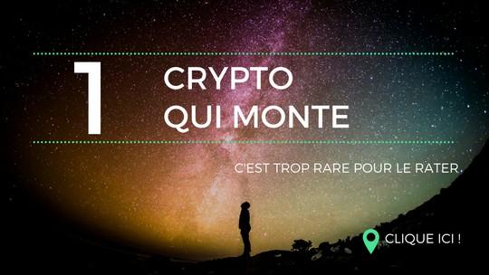 Voici la SEULE crypto qui monte encore malgré la chute des coins (vidéo)