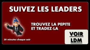 Formation Leaders de Marché de Cédric Froment
