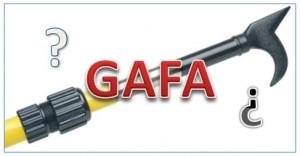 GAFA definition
