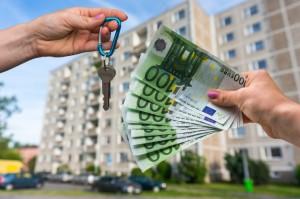 alex immobilier ou bourse ?