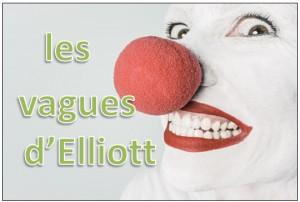 theorie vagues elliott