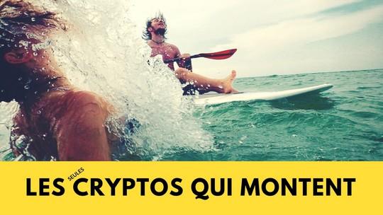 Les seules cryptos qui montent en ce moment (+ actions)