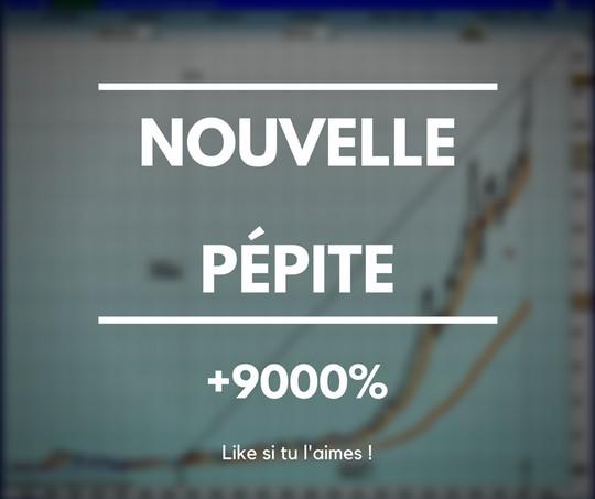 nouvelle pepite tyler 9000 pourcents