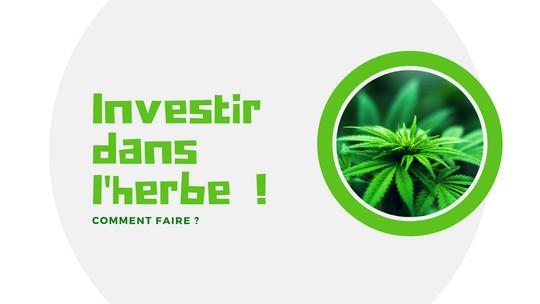 Cannabis – Comment investir dans le cannabis thérapeutique